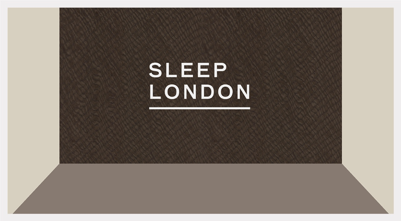 Sleep London 2017