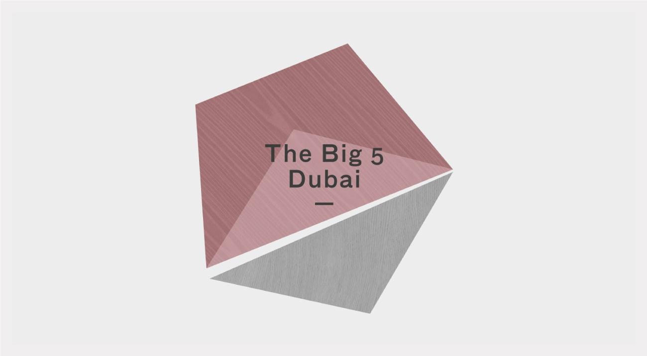 Big 5  Дубай  2016