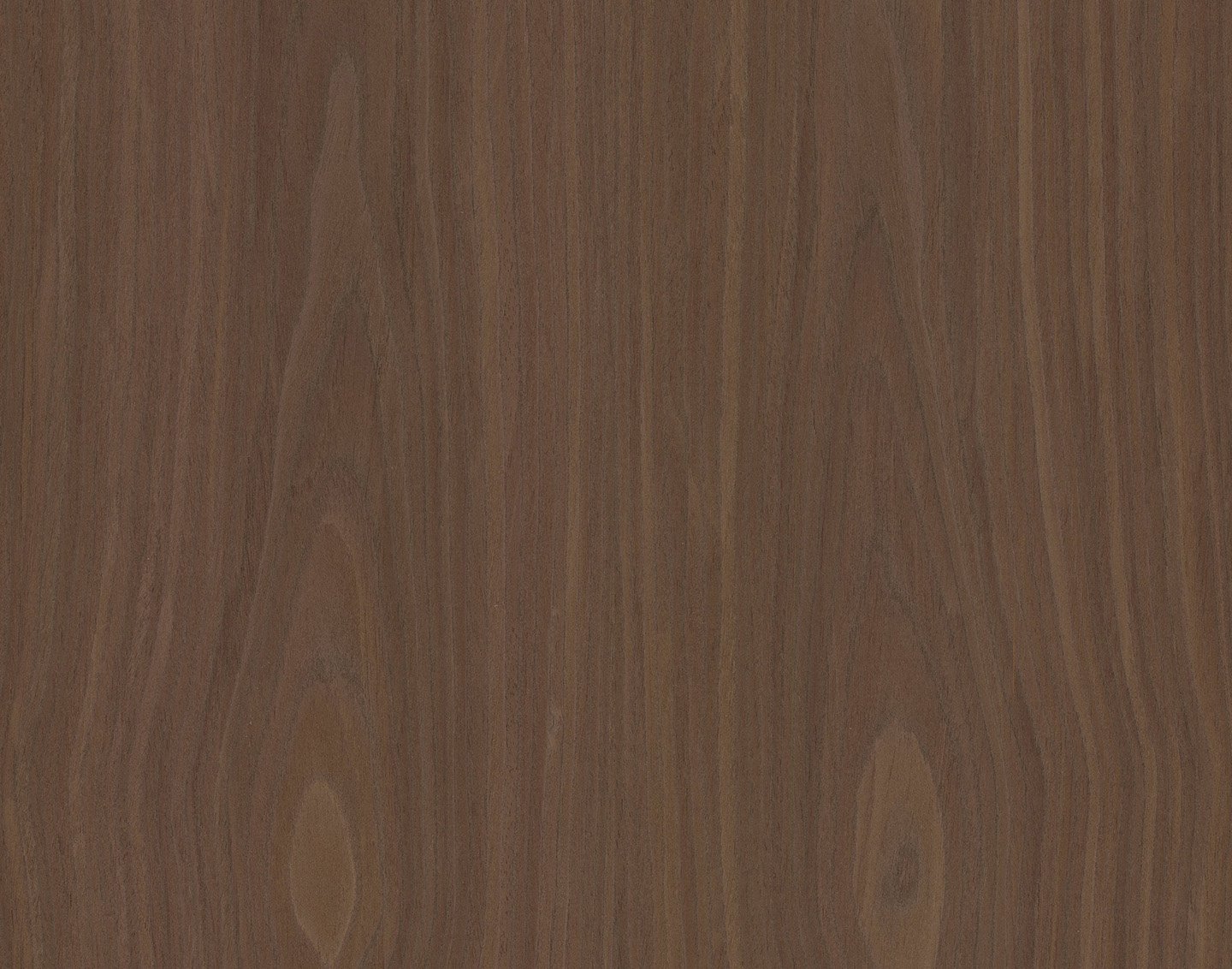 ALPI Xilo 2.0 Walnut 2-Flamed